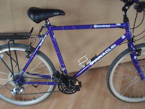 2 Vélos : Un Norco (Pinnacle)  et  Un Minelli (Mont-Echo)