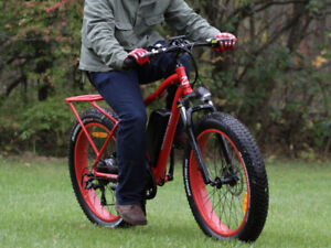 The Wild Goose Ebike  - SAVE $200!