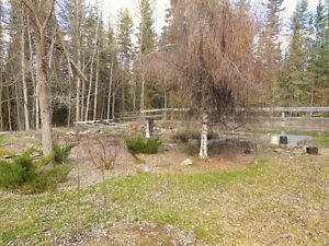 New Price!! Home on 8.74 acres in Vanderhoof Prince George British Columbia image 10