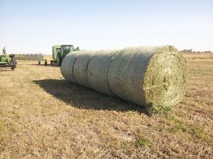 Good quality grass alfalfa in large round bales. Weyburn 8425742
