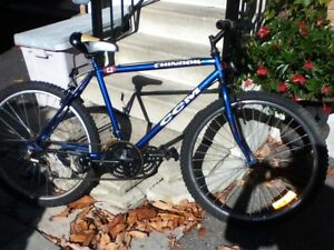 Used CCM Chinnook bicycle for sale