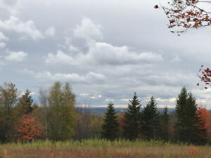 75 Acres With Valley Views Minutes From St Stephen NB