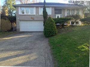 Gorgeous Bayview Village Home for Sale! Bayview Ave/Sheppard Ave