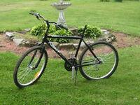 26 inch 6 speed challenge next r mountain  bike