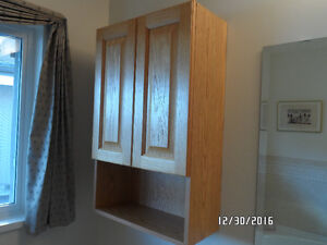 Oak Cabinets, Sink and Countertop