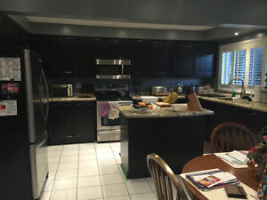 cabinet and floor refinishing / interior painting