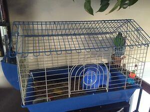 Guinea Pig pet cage