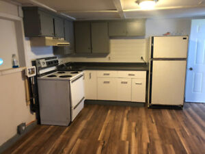 Large, Central, Recently Renovated 1 bedroom apartment for rent.