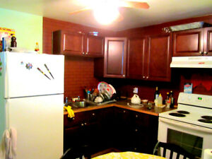 High Rise Basement apartment for rent available immediately