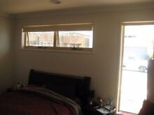 Masterbedroom with walkin robe and ensuite is available in FORDE Harrison Gungahlin Area Preview