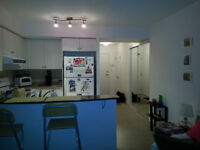 large 1 bdrm downtown condo 230 king st (kings court)