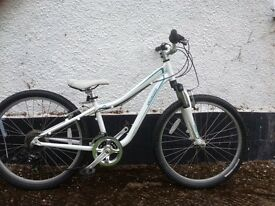 Specialized Hotrock child's bike