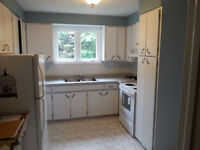 now available 10 min walk to MUN, Avalon mall, HSC room rent