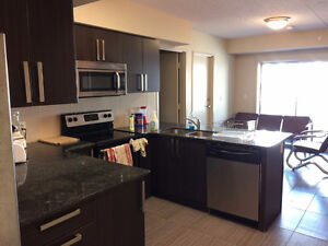 Summer 2017 Sublet (4 months) (1 to 5 rooms available)
