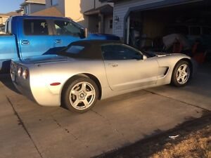 1998 Corvette convertible- spring is here!