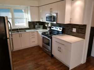 Newly renovated 2 br apt. A/C & Dishwasher, on site Laundry