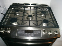 Stainless Steel Gas Stove MINT