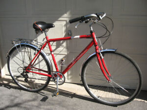 Large Schwinn 7 Speed Hybrid w/ Rear Rack