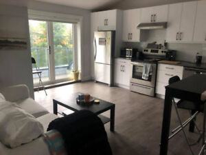 Roomate needed for a beautiful brand new laneway in East Van!