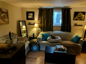 Looking For Roommate ASAP!