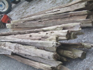 CEDAR Fence Rails. Approximately 100. $ 6.00 each Hay also.