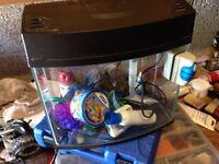 Fish tank + accessories!