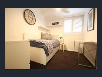 Single room in St Kilda is available