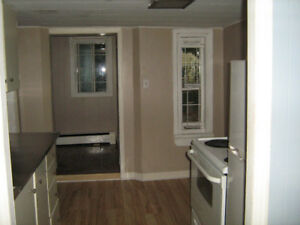 SMALL BUT NICE  1 BEDROOM BASEMENT APT. on Robie
