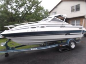 20 Foot Boat for sale