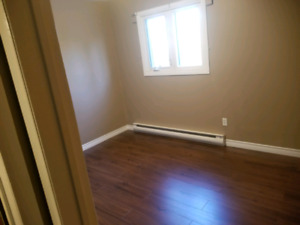 Laminate flooring installer/Painter/Landscaper