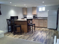 Basement Apartment - Shared space