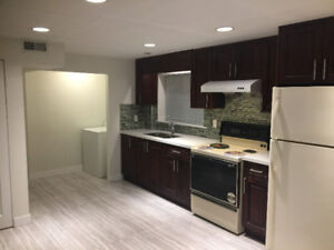 Newly renovated 3 Bedroom Basement suite for rent