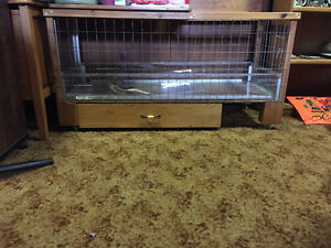 Bunny cage need gone asap