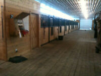 Horse stable available for rent near Chestermere