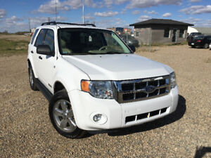 2008 Ford Escape XLT (4WD) SUV Crossover