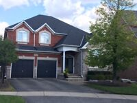Mississauga&Brampton&Bolton&Guelph reliable roofing4165588067