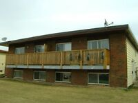 Newly renovated,   3 bedroom, 4plex suite, lower level,Innisfail