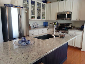 ****Stone Countertop Spring Sale starting from $45 per sq.ft **** Get your kitchen countertop done today!