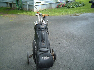 Golf clubs 2 bags  and cart