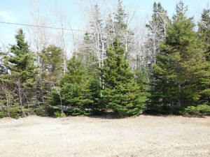 HST EXCEMPT !!Treed Lot with Beach Access