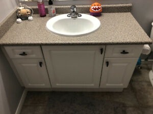 "48"" vanity and counter top"
