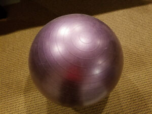CLASSIC EXERCISE BALL CHAIR *BRAND NEW!* $20