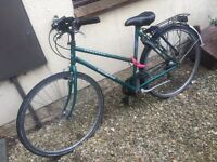 Ladies Dutch Hybrid Bike £100 ono