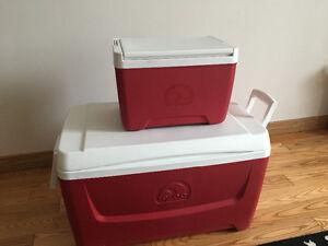 Igloo cooler set