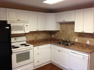 Ridgetown - 2 Bedroom Apartment for January 1st!