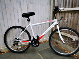Challenge Conquer mens mountain bike