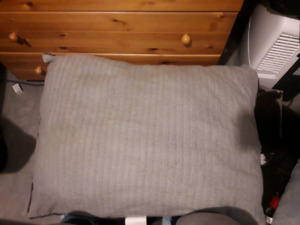 Bailey and bella dog bed