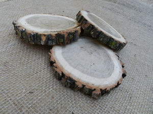 Wood Slabs / Coasters / Slices / Rounds