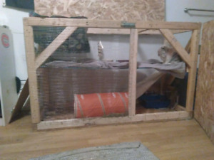 immense cage a vendre / huge cage for sale