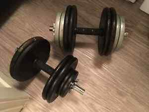 2 Dumbbell Handles and 110 lbs. weights